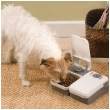 Dog and Cat 2-meal Feeder